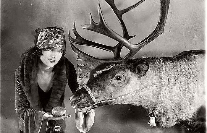 Fregatene, Rudolph!